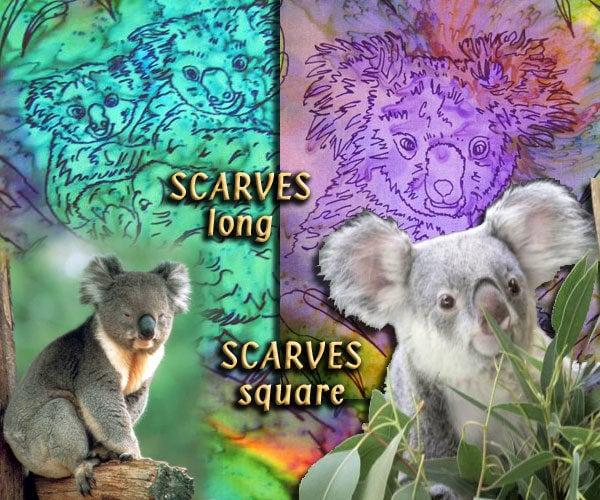 KoalasIntro